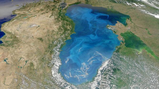 Najpiękniejszy zakwit świata. Morze Czarne w planktonie