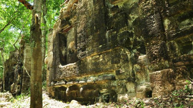 Dwa miasta Majów odkryte w dżungli
