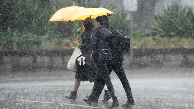 """Upragniony deszcz w Australii. """"Trzymamy kciuki, żeby padało przez najbliższe dni"""""""