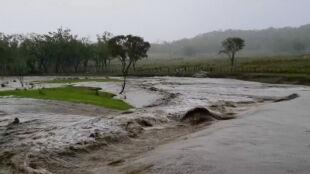 """W Australii spadł długo wyczekiwany deszcz, ale do ugaszenia pożarów """"jeszcze daleka droga"""""""