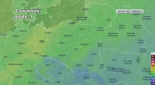Prognozowana temperatura w najbliższych dniach (Ventusky.com)